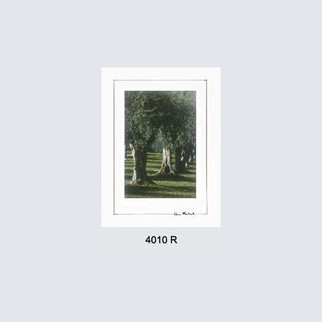 4010 R