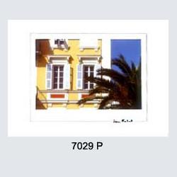 7029 P