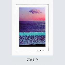 7017 P