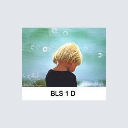 BLS 1 D